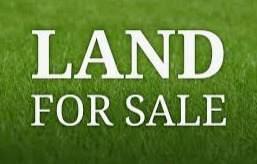 3508 S California Avenue, Chicago, IL 60632 (MLS #10761131) :: Property Consultants Realty