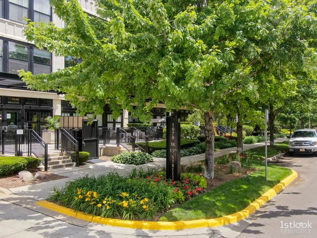 1070 W 15th Street #257, Chicago, IL 60608 (MLS #10761205) :: Property Consultants Realty