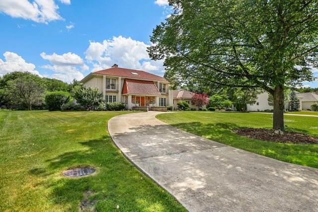 20 Deer Path Trail, Burr Ridge, IL 60527 (MLS #10761540) :: Property Consultants Realty