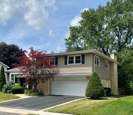 808 S Maple Street, Mount Prospect, IL 60056 (MLS #10761552) :: BN Homes Group