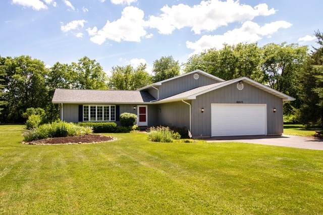 6601 Chickaloon Drive, Mchenry, IL 60050 (MLS #10761658) :: The Spaniak Team