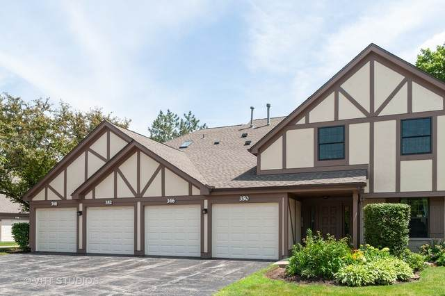 348 Essex Court 3-A-L, Wood Dale, IL 60191 (MLS #10762677) :: Property Consultants Realty