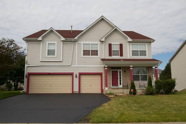 347 W Biros Lane, Round Lake, IL 60073 (MLS #10762684) :: Property Consultants Realty