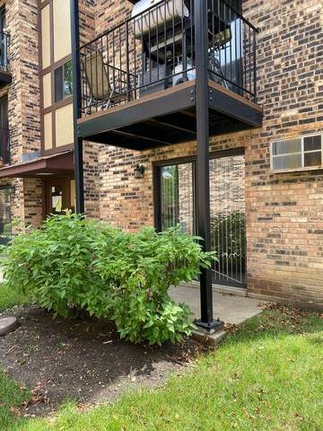 210 Klein Creek Court 2B, Carol Stream, IL 60188 (MLS #10762791) :: Property Consultants Realty
