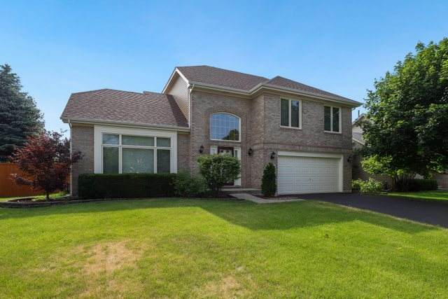 704 Autumn Drive, Bolingbrook, IL 60490 (MLS #10763486) :: Property Consultants Realty