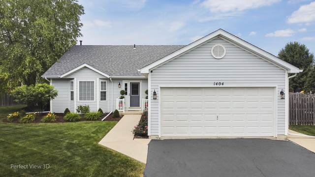 1404 Blackthorn Drive, Plainfield, IL 60586 (MLS #10763734) :: Touchstone Group
