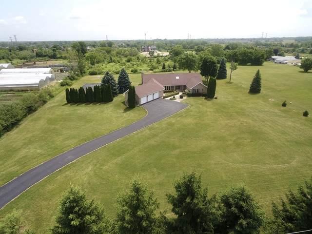 20207 88th Avenue, Mokena, IL 60448 (MLS #10764164) :: Property Consultants Realty