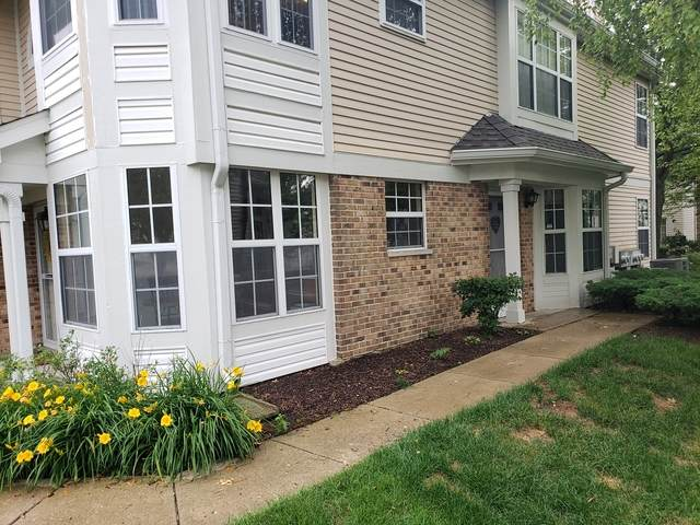 2857 Fremont Court, Schaumburg, IL 60193 (MLS #10764211) :: Property Consultants Realty