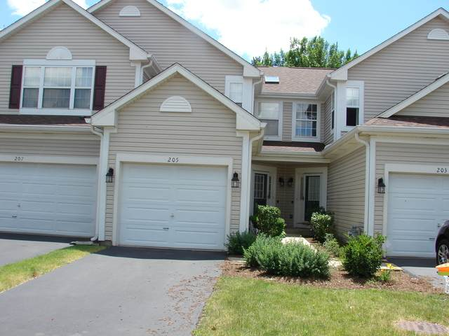 205 Northlight Passe #205, Lake In The Hills, IL 60156 (MLS #10764293) :: Angela Walker Homes Real Estate Group