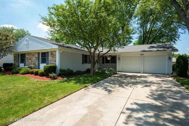510 Argyll Lane, Schaumburg, IL 60194 (MLS #10764313) :: Angela Walker Homes Real Estate Group