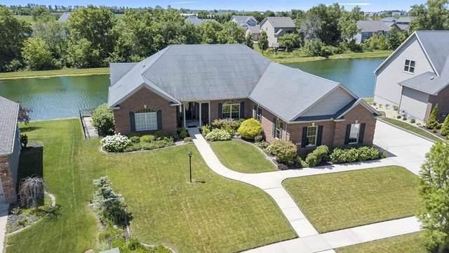 705 Lake Falls Boulevard, Savoy, IL 61874 (MLS #10764314) :: Ryan Dallas Real Estate