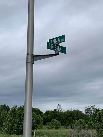 Lot 18 Trisha Court, Monee, IL 60449 (MLS #10764372) :: Littlefield Group