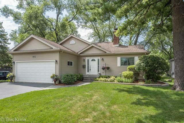 213 Grant Street, Downers Grove, IL 60515 (MLS #10764439) :: The Wexler Group at Keller Williams Preferred Realty