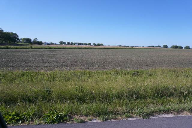 Section 19 NE T33n R13e, Peotone, IL 60468 (MLS #10764451) :: Property Consultants Realty