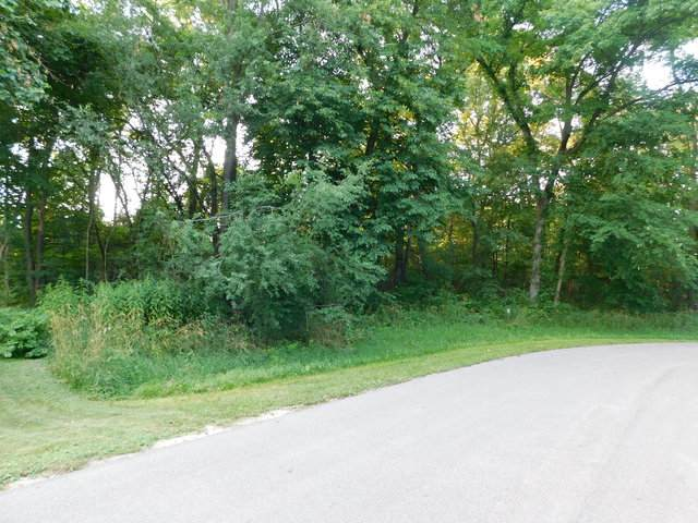 lot 24 River Ridge Lane, Sandwich, IL 60548 (MLS #10764782) :: Property Consultants Realty