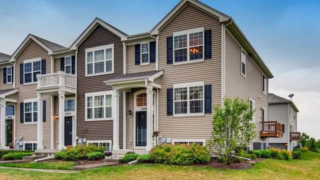 1045 Piccolo Lane, Volo, IL 60073 (MLS #10764982) :: Property Consultants Realty