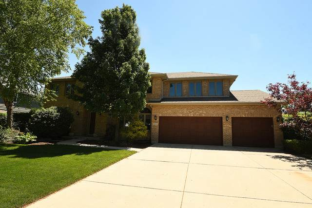 119 Grant Avenue, Frankfort, IL 60423 (MLS #10765521) :: Property Consultants Realty