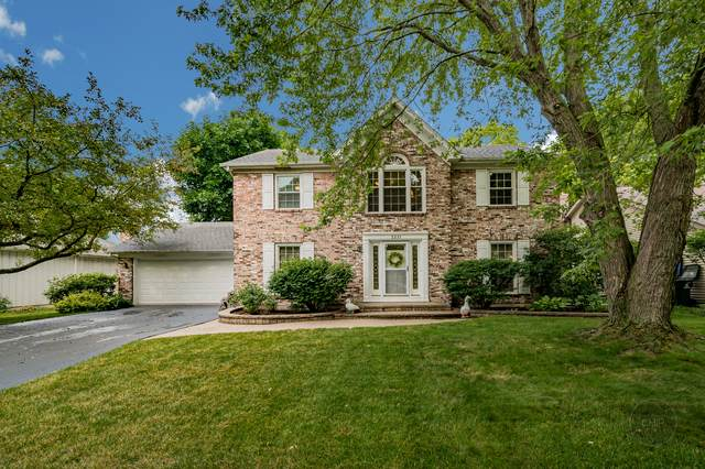 2231 Remington Drive, Naperville, IL 60565 (MLS #10765980) :: Property Consultants Realty