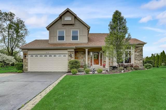873 Broadway Court, Lake Zurich, IL 60047 (MLS #10766157) :: BN Homes Group