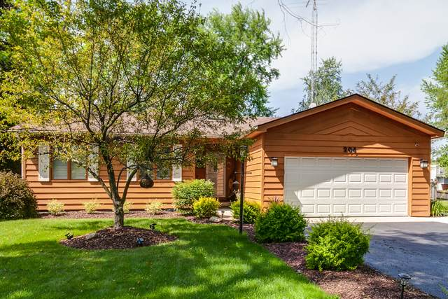 204 Dannell Place, Spring Grove, IL 60081 (MLS #10766168) :: Property Consultants Realty
