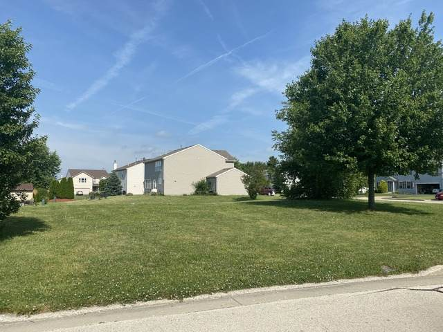 800 Willow Street, Kirkland, IL 60146 (MLS #10766237) :: Property Consultants Realty