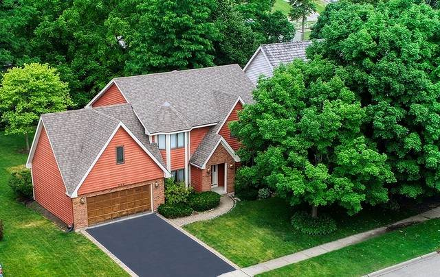336 Belle Court, Grayslake, IL 60030 (MLS #10766349) :: Property Consultants Realty
