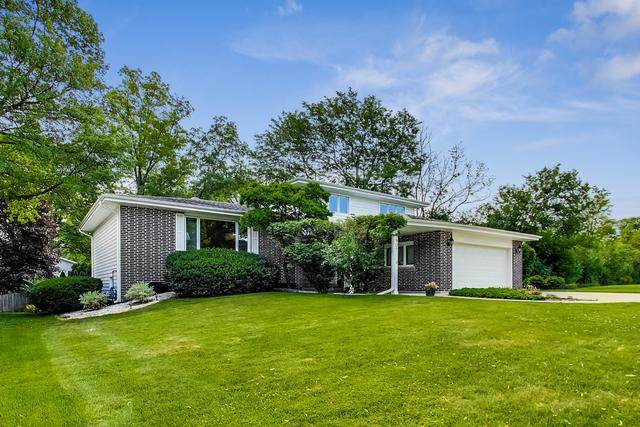 3907 Saratoga Avenue, Downers Grove, IL 60515 (MLS #10766444) :: The Dena Furlow Team - Keller Williams Realty