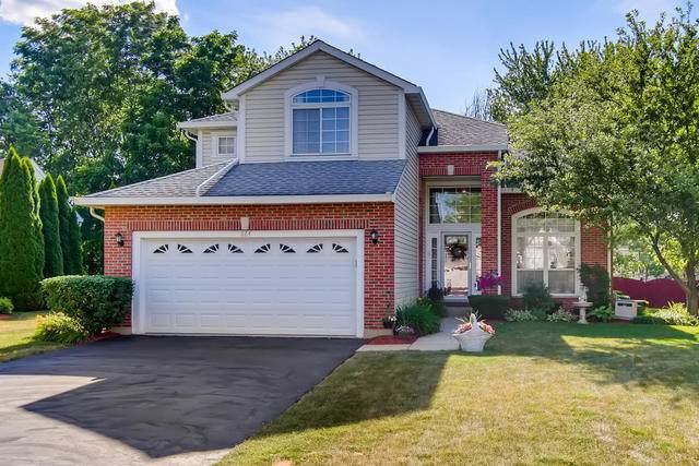 864 Tallgrass Drive, Bartlett, IL 60103 (MLS #10766498) :: Angela Walker Homes Real Estate Group