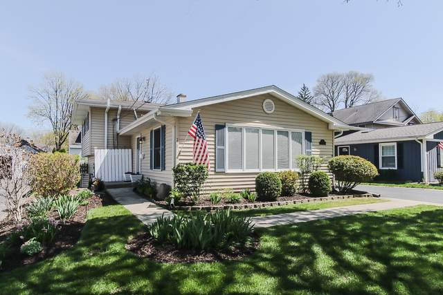 225 N Hager Avenue, Barrington, IL 60010 (MLS #10766520) :: Property Consultants Realty