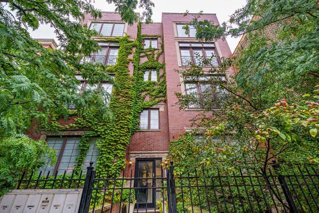 1810 W Armitage Avenue 2E, Chicago, IL 60622 (MLS #10766578) :: Property Consultants Realty
