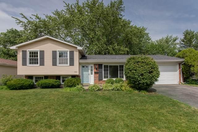 8064 Olivia Lane, Hanover Park, IL 60133 (MLS #10767103) :: Ani Real Estate