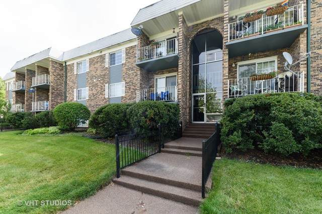 1617 N Windsor Drive #205, Arlington Heights, IL 60004 (MLS #10767329) :: Property Consultants Realty
