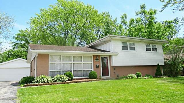 19001 Martin Lane, Country Club Hills, IL 60478 (MLS #10767339) :: Property Consultants Realty