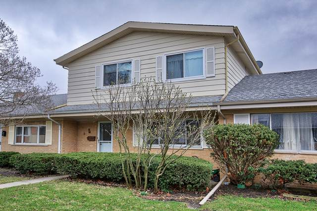 9033 N Grace Avenue, Niles, IL 60714 (MLS #10767354) :: Property Consultants Realty