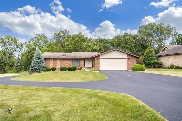 16615 S Spaniel Drive, Homer Glen, IL 60491 (MLS #10767426) :: Ryan Dallas Real Estate
