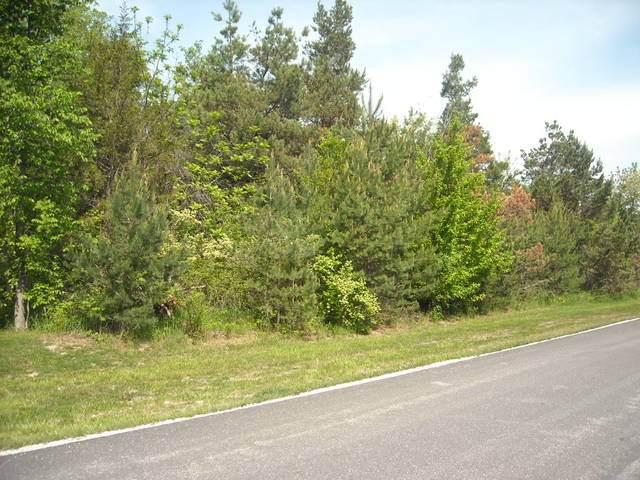 Lot 23 S Pinewood Lane, Monee, IL 60449 (MLS #10767646) :: Littlefield Group
