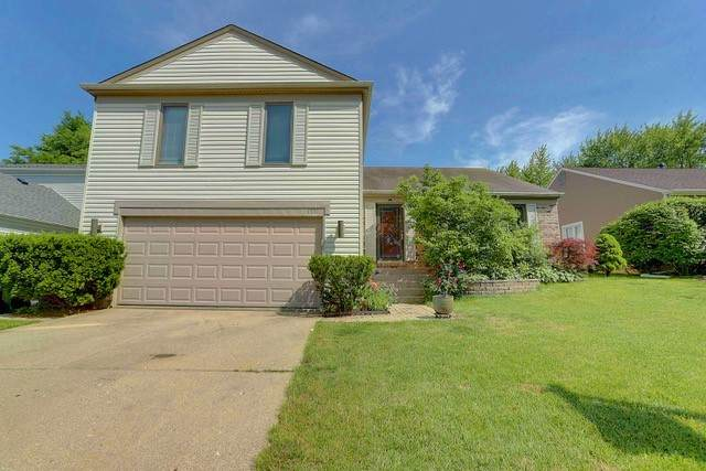 1331 Gail Drive, Buffalo Grove, IL 60089 (MLS #10767968) :: Lewke Partners