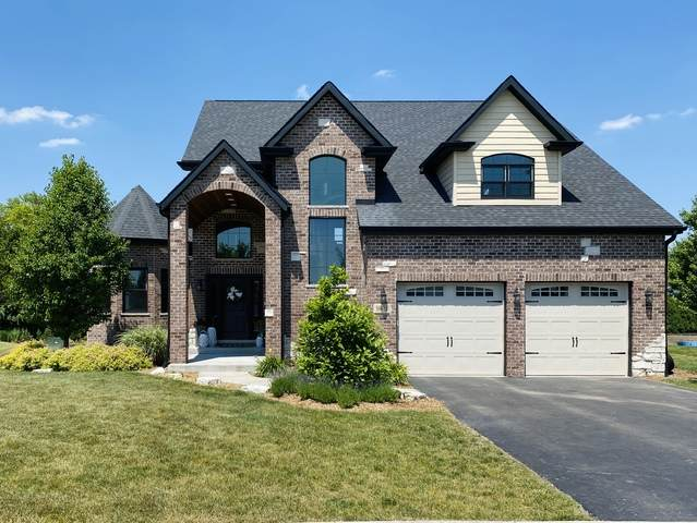 19616 S Sophie Court, Frankfort, IL 60423 (MLS #10768054) :: Property Consultants Realty