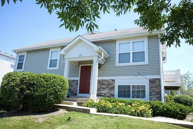 126 Holiday Lane, Hainesville, IL 60073 (MLS #10768070) :: Littlefield Group