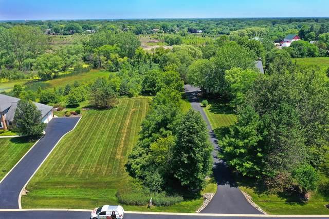 6864 Ellis Drive, Long Grove, IL 60047 (MLS #10768219) :: Jacqui Miller Homes