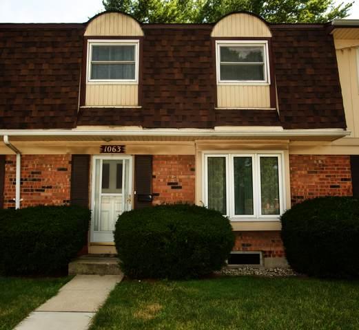 1063 Euclid Lane, Richton Park, IL 60471 (MLS #10768240) :: Property Consultants Realty