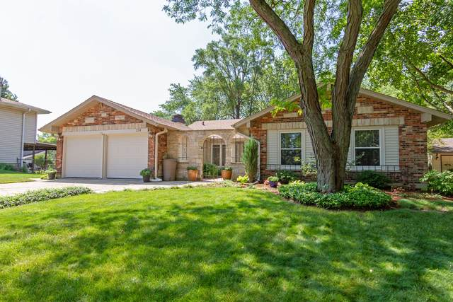 238 Circle Avenue, Bloomingdale, IL 60108 (MLS #10768396) :: Property Consultants Realty
