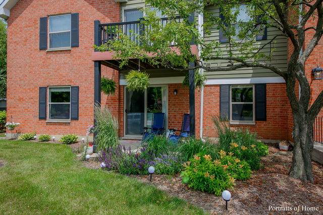 1348 Mcdowell Road #103, Naperville, IL 60563 (MLS #10768648) :: Touchstone Group