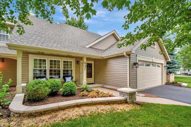 537 Tewksbury Circle, Oswego, IL 60543 (MLS #10768684) :: Property Consultants Realty