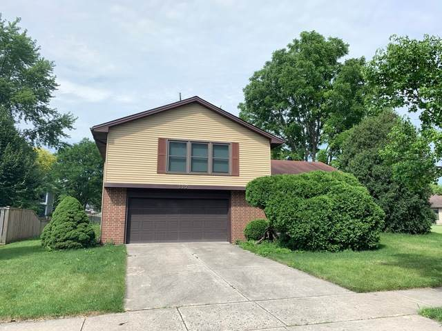 117 Encina Drive, Naperville, IL 60540 (MLS #10768833) :: Knott's Real Estate Team