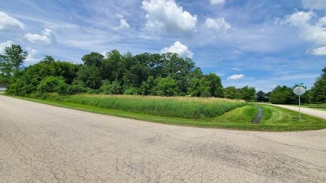 10909 Pebble Drive, Huntley, IL 60142 (MLS #10768843) :: Suburban Life Realty