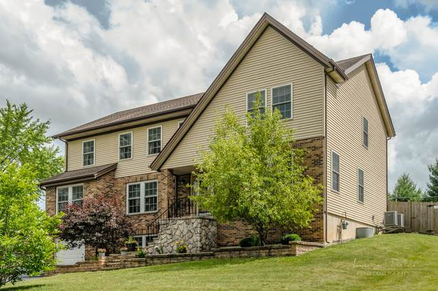 1241 Lakewood Drive, Lake Holiday, IL 60552 (MLS #10768986) :: Property Consultants Realty