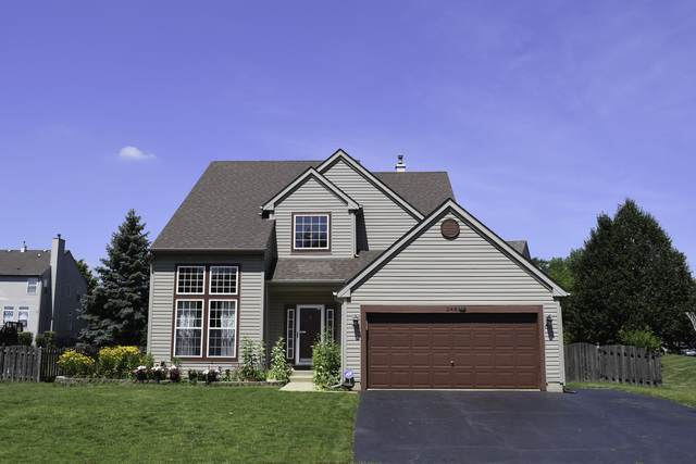 248 Butler Drive, Bartlett, IL 60103 (MLS #10769265) :: Property Consultants Realty
