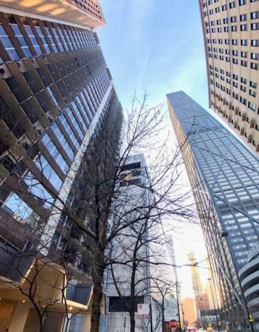 201 E Chestnut Street 19E, Chicago, IL 60611 (MLS #10769494) :: Suburban Life Realty