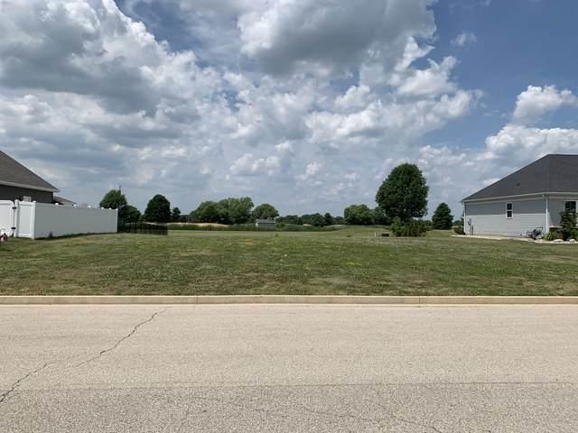 1409 Railside Drive, Gibson City, IL 60936 (MLS #10769768) :: Ryan Dallas Real Estate